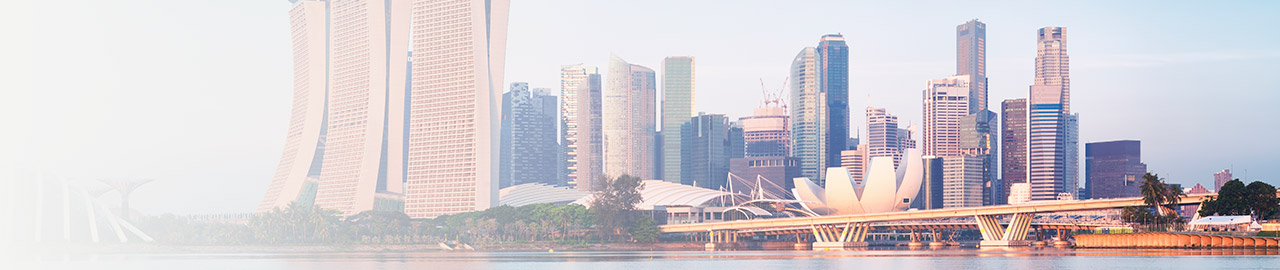 Insight has local IT presence in Singapore.